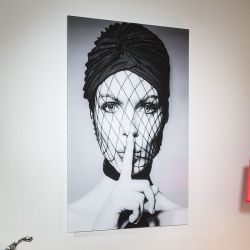 Stunning Large photographic 800 x 1200 Art On Acrylic .Audrey .Gn4827